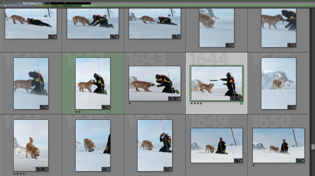 Reporter-Photographe.org : Derrière les images