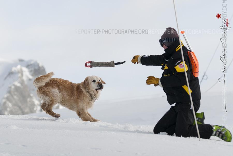 Pisteur secouriste et son chien de recherche en avalanches [Ref: 2310-02-1657]
