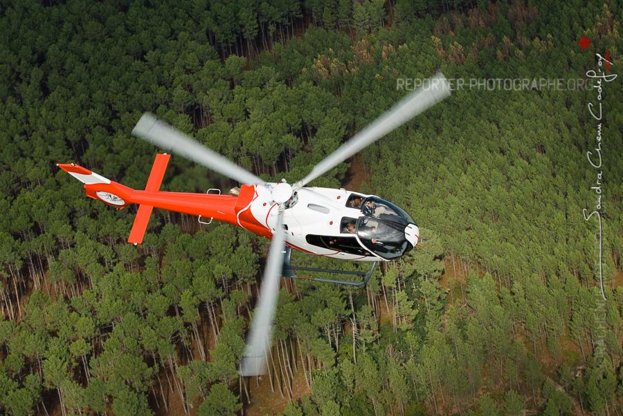 Hélicoptère EC-120 NHE survolant la forêt [Ref:3310-21-0331]