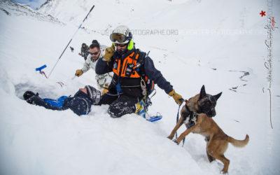Une équipe cynophile de recherche des victimes d'avalanche