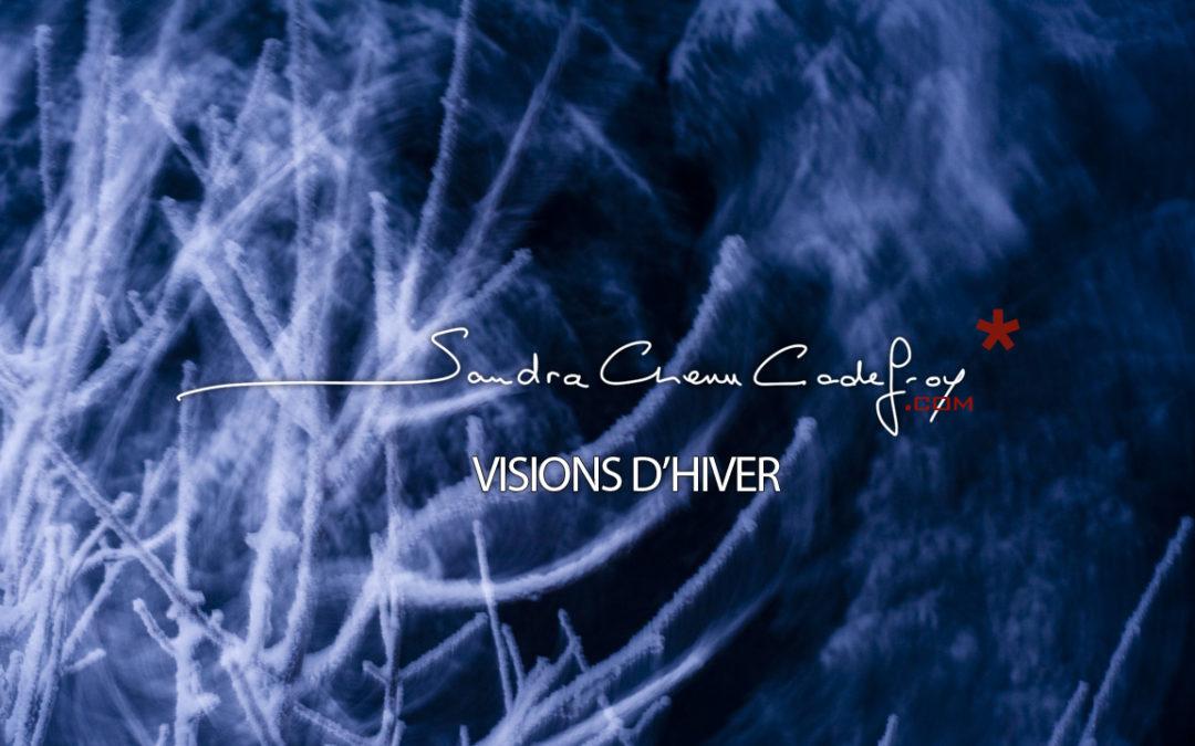 POM / Visions d'hiver… meilleurs voeux pour 2011